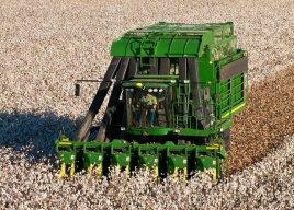 The cotton picking jobs