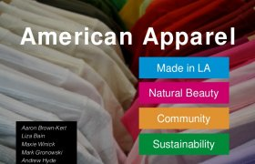 American Apparel Demographics