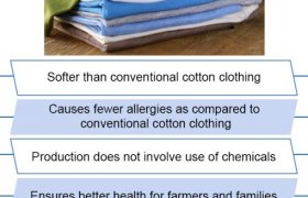 Cotton clothing Information