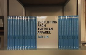 Tao Lin Shoplifting from American Apparel